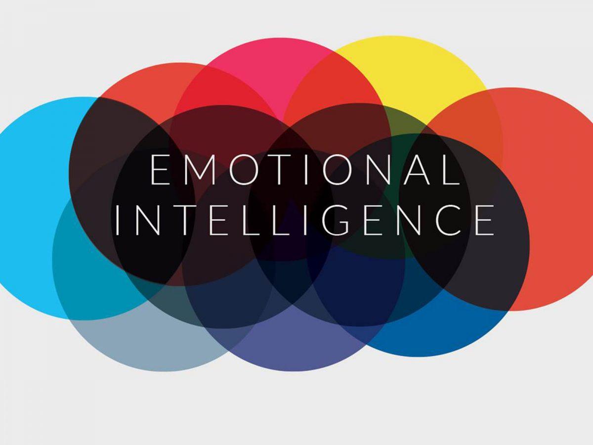 Berkenalan dengan Kecerdasan Emosional, Kecerdasan yang Penting Dimiliki oleh Human Resources